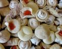 Cafe Macchiatio Cups - Chocolate Chip Cinnamon Strips - Nut Horns - Strawberry Lilies - Vanilla Crinkles