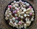 Almond Tarts - Cafe Macchiato Cups - Chocolate Cinnamon Strip - Chocolate Truffle Cups - Ladylocks - Strawberry lilies - Thumbprints (pink and gray)