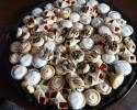 Cafe Macchiato Cups - Lemon Shortbread Tarts - Raspberry Meltaways - Salted Caramel Thumbprints