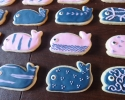 Sugar cookie whales frosted in pink and navy