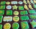 Sugar cookie St. Gabriel logos, stars, placards, stars, and alligators frosted in green and yellow